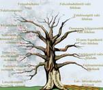 Az élet és a halál fája
